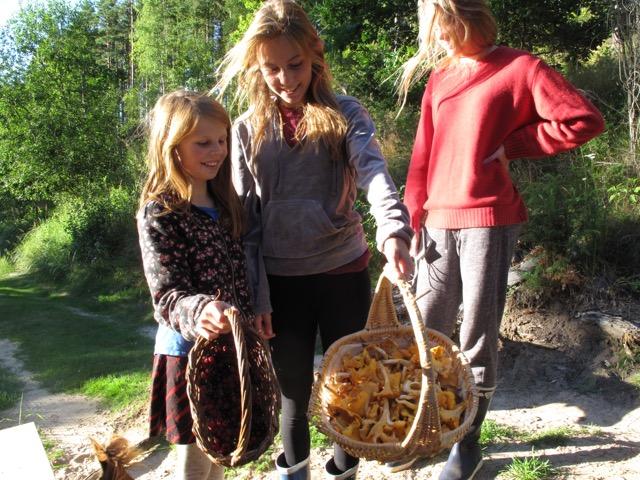 Skog och flickar